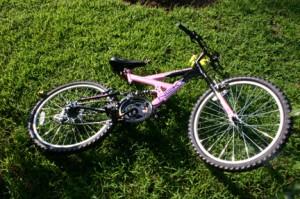 shellie carson bike